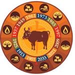 Buey, Calculadora cuatro pilares, Ba Zi, carta astral china, horoscopo chino, feng shui, estudios de feng shui tradicional