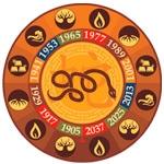 Serpiente, Calculadora cuatro pilares, Ba Zi, carta astral china, horoscopo chino, feng shui, estudios de feng shui tradicional